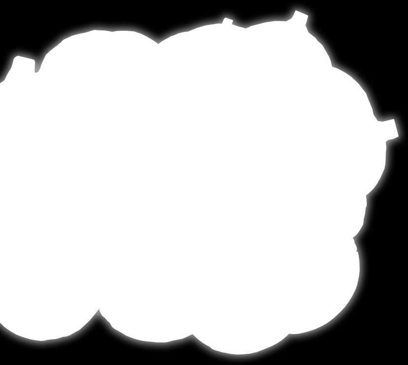 Foto nende kujudest ja suurusest Liikmesuuruse test Internetis