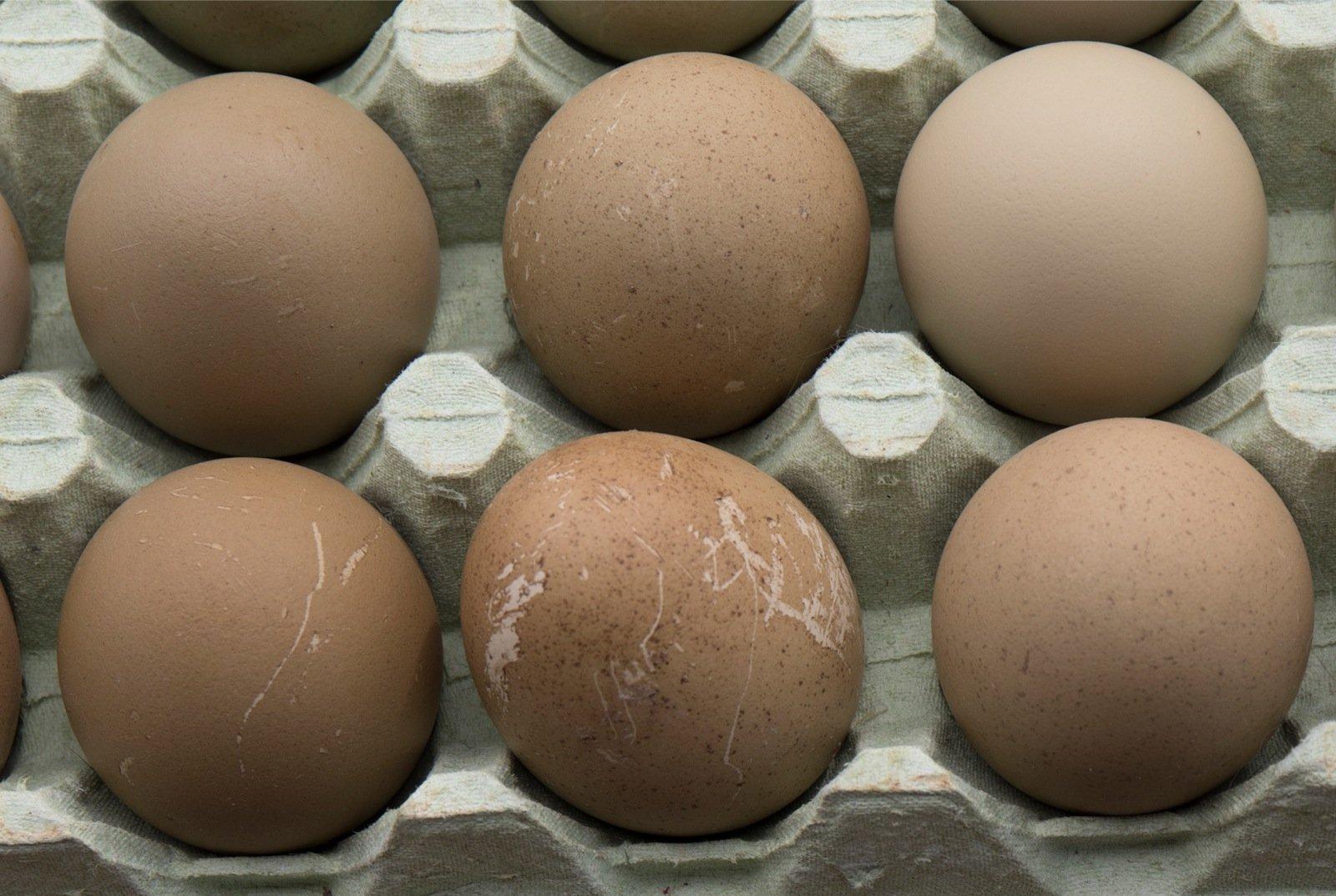 Liige ja munad Mida teha midagi suurendamiseks